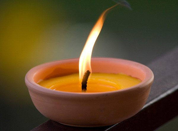 citronella-candle-bugs-600